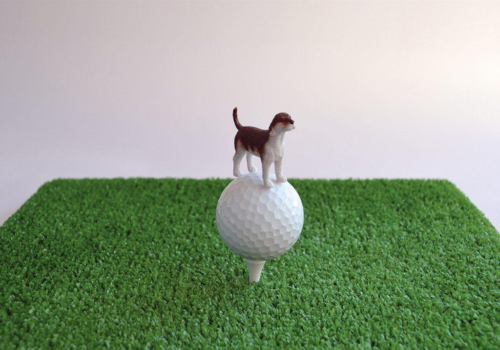 Kiddy-dog