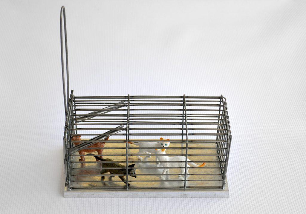 Mousetrap for Pets